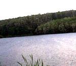 Lacul pentru pescuit sportiv Magura.