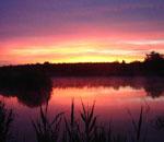 Lacul pentru pescuit sportiv Afumati.