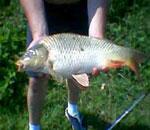 Lacul pentru pescuit sportiv Balotesti.
