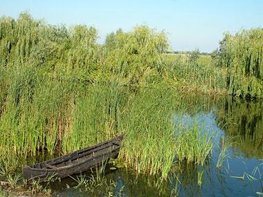 Download Galerie foto pescuit, poze din Delta Dunarii, locuri de