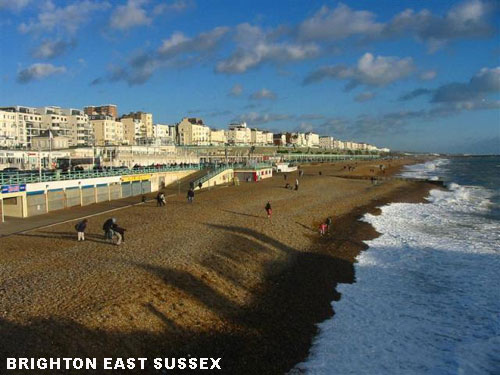 East Sussex - Brighton Holistics